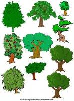 Immagini da ritagliare disegni colorati per attivit for Foto di alberi da colorare