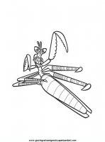 disegni_da_colorare/kung_fu_panda/kungfu_panda_1.JPG