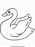 disegni_da_colorare_animali/animali_acquatici/cigno_2.JPG