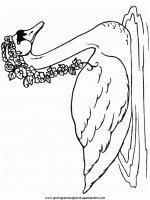 disegni_da_colorare_animali/animali_acquatici/cigno_3.JPG