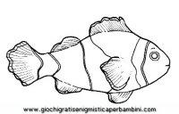 disegni_da_colorare_animali/animali_acquatici/clownfish.JPG