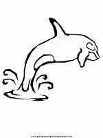 disegni_da_colorare_animali/animali_acquatici/delfino_4.JPG