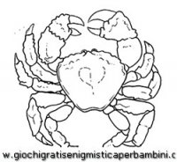 disegni_da_colorare_animali/animali_acquatici/granchio.JPG