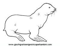 disegni_da_colorare_animali/animali_acquatici/otaria.JPG