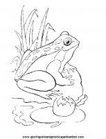 disegni_da_colorare_animali/animali_acquatici/pesci_11.JPG