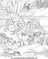 disegni_da_colorare_animali/animali_acquatici/pesci_13.JPG
