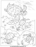 disegni_da_colorare_animali/animali_acquatici/pesci_15.JPG