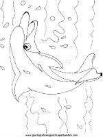 disegni_da_colorare_animali/animali_acquatici/pesci_26.JPG