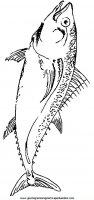 disegni_da_colorare_animali/animali_acquatici/pesci_36.JPG